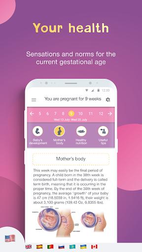 Hamilelik Takvimi ve Tracker